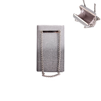 RECTANGLE HARD CASE EVENING BAG