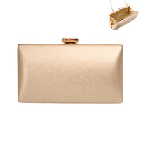 STRUCTURED EVENING CLUTCH