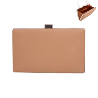 THIN STRUCTURED EVENING CLUTCH