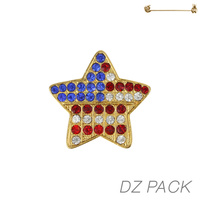 Flag0016G Patriotic Stone Flag Star Pin