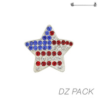 Flag0016S Patriotic Stone Flag Star Pin