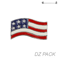 Flag0031S Patriotic Enamel Flag Pin