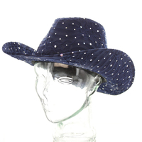 Glitter Sparkle Cowboy Hat Htc590Nv