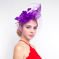 FASCINATOR W/FEATHER NETTING